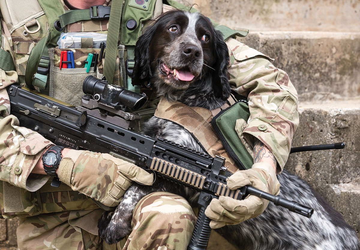 Army dog with his handler
